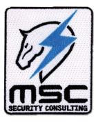Metal Gear Rising Maverick Patch