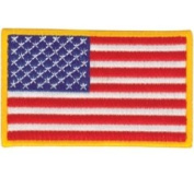 Martial Arts American Flag Patch