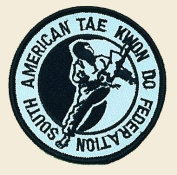Tae Kwon Do Logo Embroidered Iron on or Sew on Patch