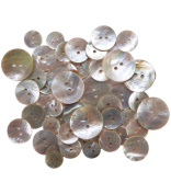 Blumenthal Lansing Favourite Findings Shellz Buttons, Multi, Size Round Agoya