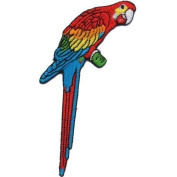 """ Parrot "" Iron On Patch"