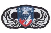 187th Airborne Regimental CBT Team Patch