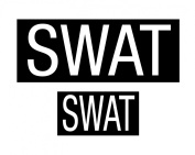 SWAT PATCH SET OF TWO W/ HOOK BACK