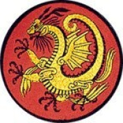 Fighting Golden Dragon Round 5.1cm Patch