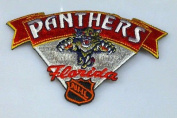 Florida Panthers 3x4 cool embroided patch