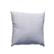 18 x 18 Indoor/Outdoor Poly Fill Pillow Form By The Each