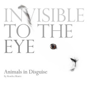 Invisible to the Eye
