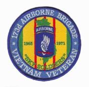 173rd Airborne Brigade Vietnam Veteran Patch