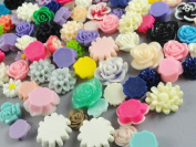 40pcs Mix Resin Roses Flatback the the Buttons Scrapbooking DIY