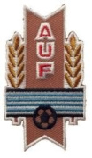 Uruguay AUF Fifa World Cup Soccer Iron on Patch Crest Badge ... 7cm X 4.1cm .. New