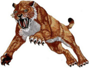 Sabre Tooth Tiger Embroidered Patch 11.5cm X 10cm