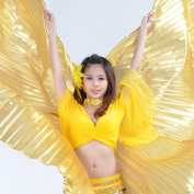 AQY New High Quality Gold belly dancing wings , with free sticks