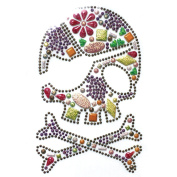 Rhinestone Iron on Transfer Hot Fix Motif Multi Colour Skull Fashion Design 3 Sheets 5*21cm