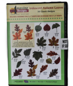 Amazing Designs Iridescent Autumn Leaves 30 Classic Designs CD ROM