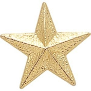 Gold Star Pin - 2.2cm