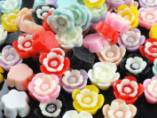 48 Pcs Two-colour Resin Rose Flatback Appliques/embellishments/baby-crafts U Pick
