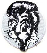 7.6cm x 7.6cm STRAY CAT Logo Heavy Metal Punk Rock Music Jacket T-shirt Patch Sew Iron on Embroidered music patch by Tourlesjours