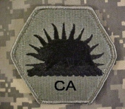 California State Military Reserve ACU Patch - Foliage Green