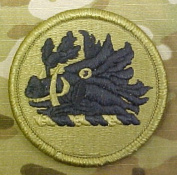 Georgia Army National Guard OCP Multicam Patch