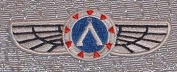 Stargate SG-1 TV Series Silver Pilot Wings PATCH