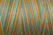 Valdani Multi-Colour Thread ~ Red ~ Orange ~ Blue ~ Yellow ~ Rainbow Coloured Variegated Quilting Thread 50wt (40wt U.S.) 100% Cotton~ 575yd ~ Sunny Rainbow ~ M36