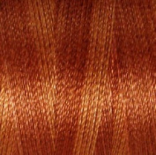 Valdani Multi-Colour Thread ~ Rust ~ Orange ~ Brown Variegated Quilting Thread 50wt (40wt U.S.) 100% Cotton~ 545yd ~ Rusted Orange ~ P6