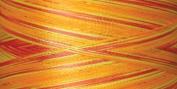 Rainbows Thread 500 Yards-Mango Mango