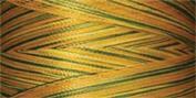 Rainbows Thread 500 Yards-Turning Leaves