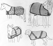 Suitability 7606 Blanket/Sheet For Miniature Horses Foal Pony Dog Equestrian Sewing Pattern