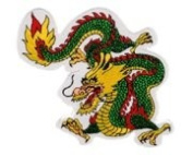 Gold Dragon Patch (15cm ) #1214