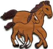 Horse Colt Bronco Filly Mustang Pony Stallion Steed Applique Iron-on Patch S-559 Cute Gift to Your Cloth.