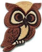Owl Bird of Prey Hoot Animal Wildlife Applique Iron-on Patch New S-681 Cute Gift to Your Cloth.