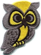 Owl Bird of Prey Hoot Animal Wildlife Applique Iron-on Patch New S-683 Cute Gift to Your Cloth.
