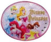 Pioneer _Disney_ iron adhesion applique MY120 DisneyPrincess