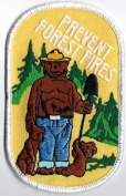 Smokey The Bear Vintage Prevent Forest Fires Iron On Patch - 1979 Forest Scene
