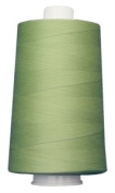 #3081 Citrus Mint Omni Thread by Superior Threads
