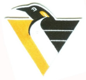 Pittsburgh Penguins Throwback Patch