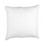 50cm x 50cm Indoor/Outdoor Poly Fill Pillow Form By The Each