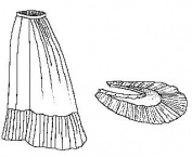 Sewing Pattern - 1879 Petticoat with Detachable Train
