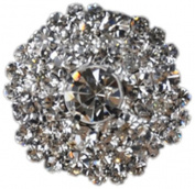 Rhinestone Button BRB-120, 2.5cm Silver Resin Base Button, Each Carded