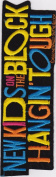 New Kids On The Block LG Hangin Tough Music Patch - NKOTB - 25cm x 7.6cm Made in 1990