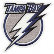 NHL Team Logo Patch NHL Team