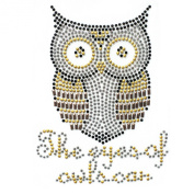 Rhinestone Transfer Hot Fix Motif Fashion Design Jewellery Cushion Mini Owl Deco 3 Sheets 3.5*12cm