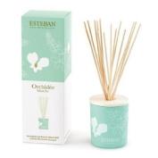 Esteban Orchidee Blanche Scented Decorative Bouquet Diffuser 100ml