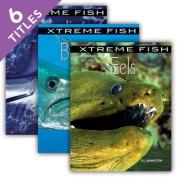Xtreme Fish (Xtreme Fish)