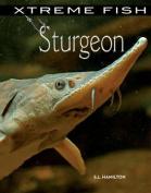 Sturgeon (Xtreme Fish)