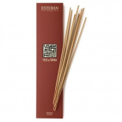 Esteban Teck & Tonka Bamboo Stick Incense 20 Incense Sticks