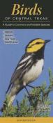 Birds of Central Texas