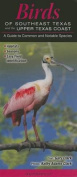Birds of Southeast Texas & the Upper Texas Coast  : A Guide to Common & Notable Species