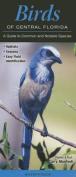Birds of Central Florida